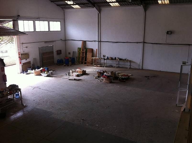 Foto - Nave industrial en alquiler en calle Artes Graficas, Babel en Alicante/Alacant - 184538254