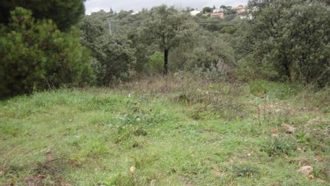 parcela-en-venta-en-generalisimo-urb-encinar-del-alberche-en-villa-del-prado-30161520