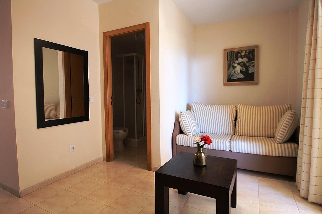 Salón - Apartamento en alquiler de temporada en carretera Las Marinas, Las Marinas - Les Marines  en Dénia - 200886898