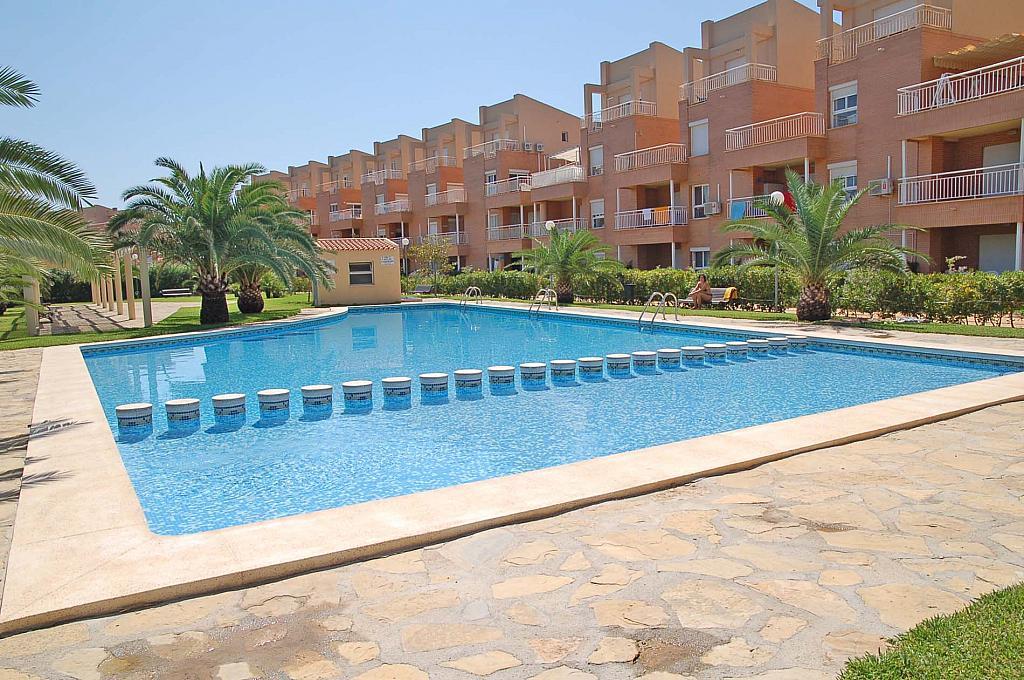 Piscina - Apartamento en alquiler de temporada en carretera Las Marinas, Las Marinas - Les Marines  en Dénia - 271484823