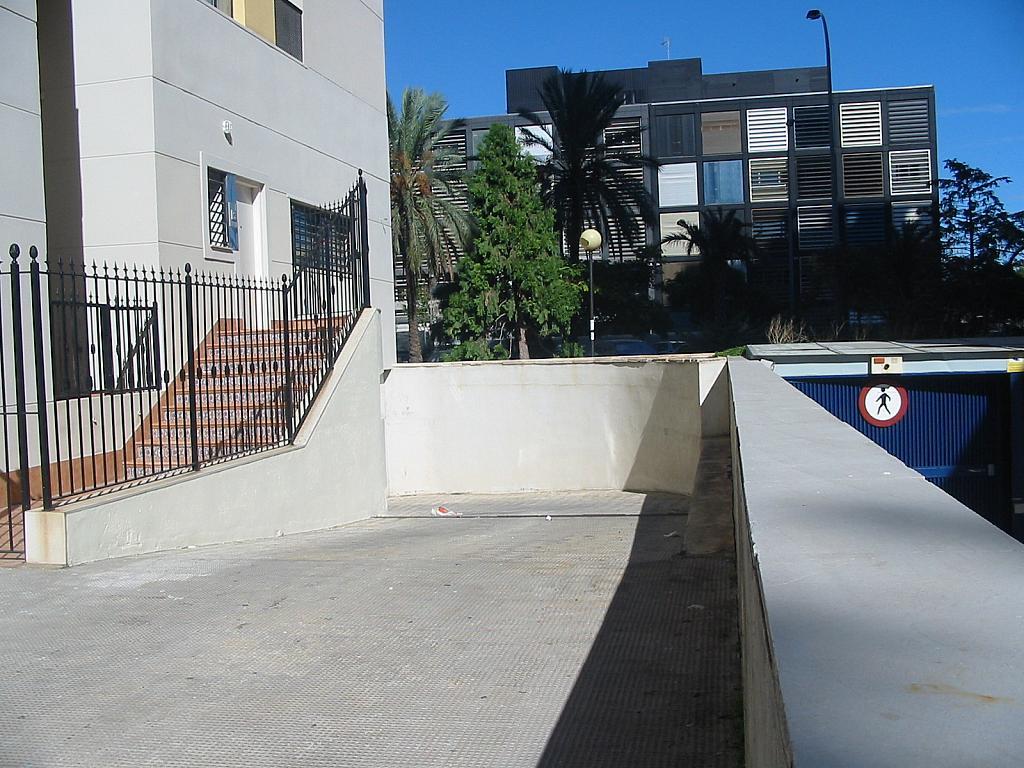Local en alquiler en calle Serpis, Algirós en Valencia - 161542750