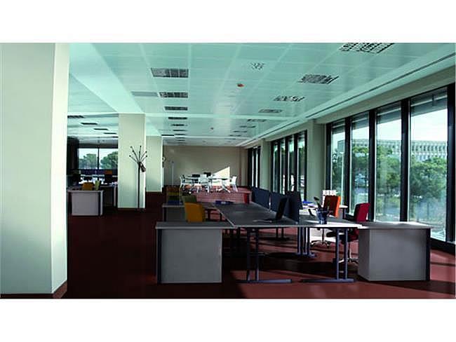 Oficina en alquiler en Sant Cugat del Vallès - 317399003