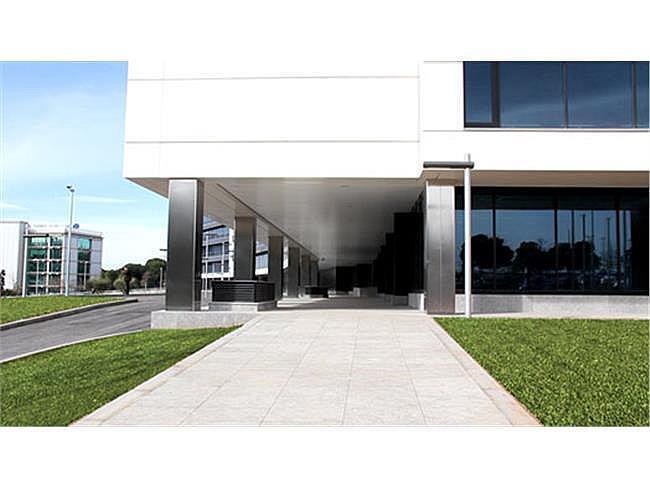 Oficina en alquiler en Sant Cugat del Vallès - 317399015