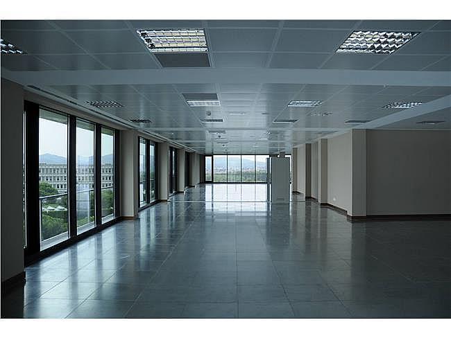 Oficina en alquiler en Sant Cugat del Vallès - 317399030