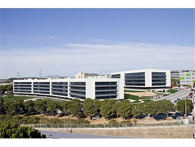 Oficina en alquiler en Sant Cugat del Vallès - 317399057