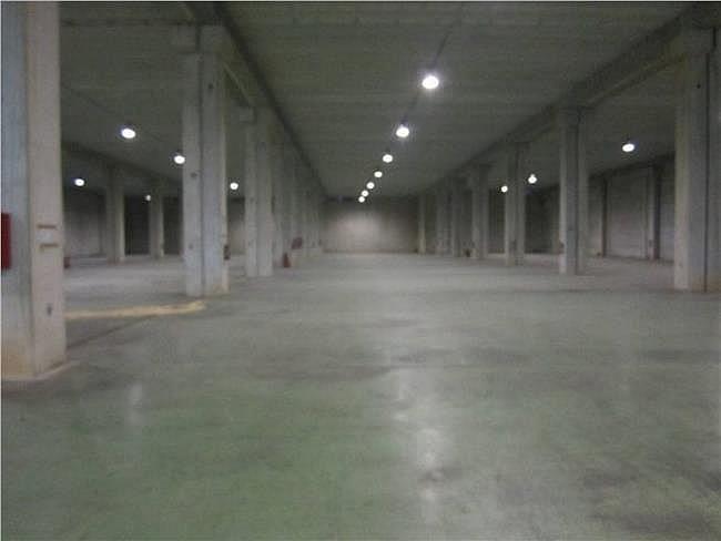 Nave industrial en alquiler en Sabadell - 304175528