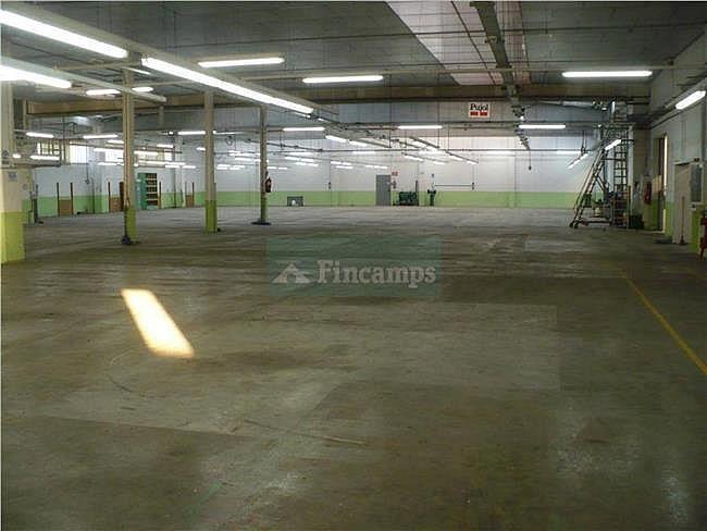 Nave industrial en alquiler en Sabadell - 317398103