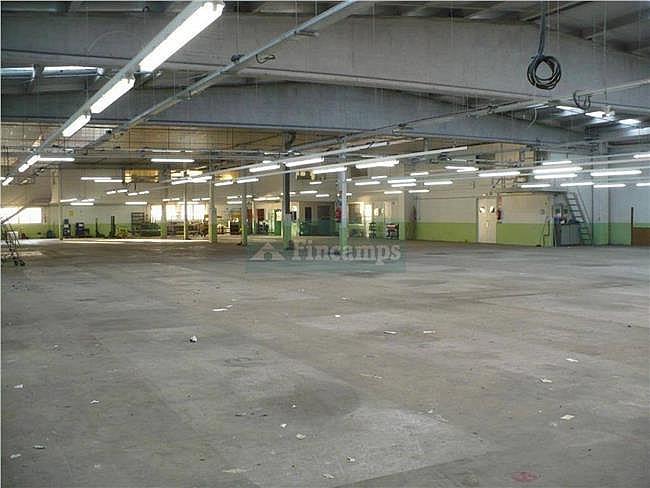 Nave industrial en alquiler en Sabadell - 317398115