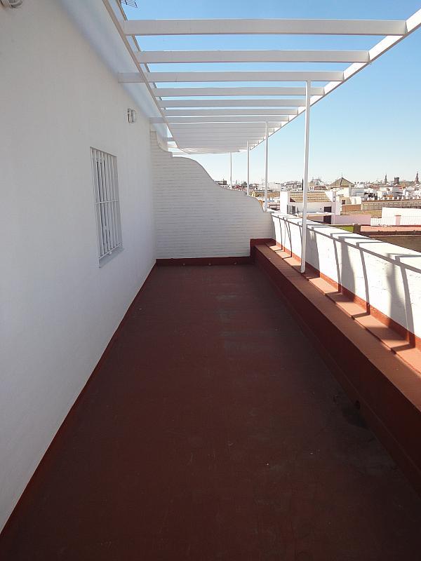 Detalles - Oficina en alquiler en Santa Catalina en Sevilla - 297994919