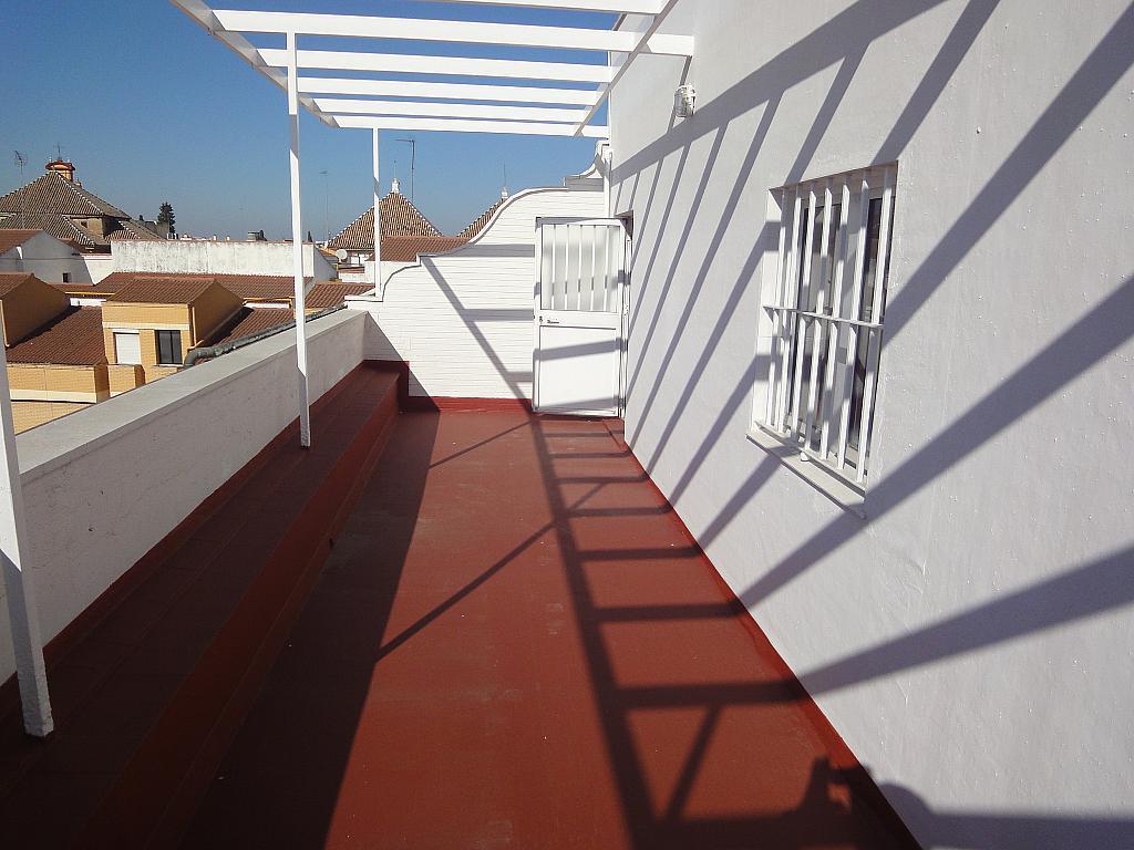 Detalles - Oficina en alquiler en Santa Catalina en Sevilla - 297994926