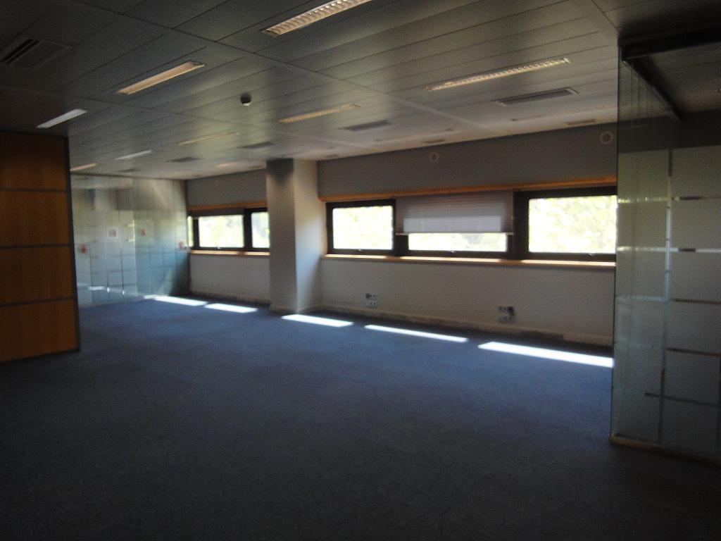 Detalles - Oficina en alquiler en Nervión en Sevilla - 315273730
