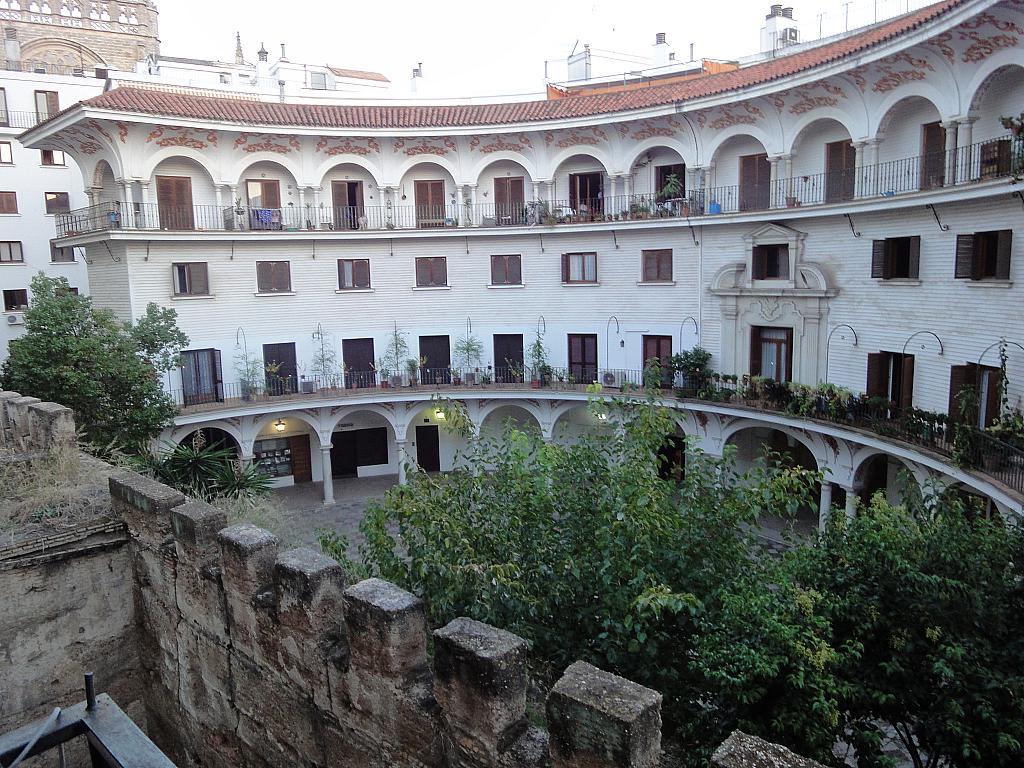 Detalles - Oficina en alquiler en Casco Antiguo en Sevilla - 156733830