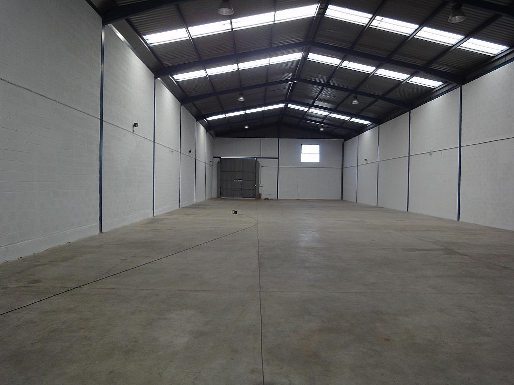 Detalles - Nave industrial en alquiler en Camas - 216808800