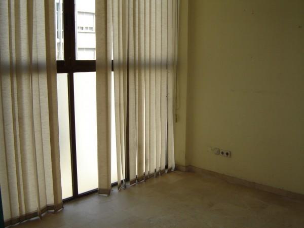 Oficina en alquiler en Casco Antiguo en Sevilla - 13773685