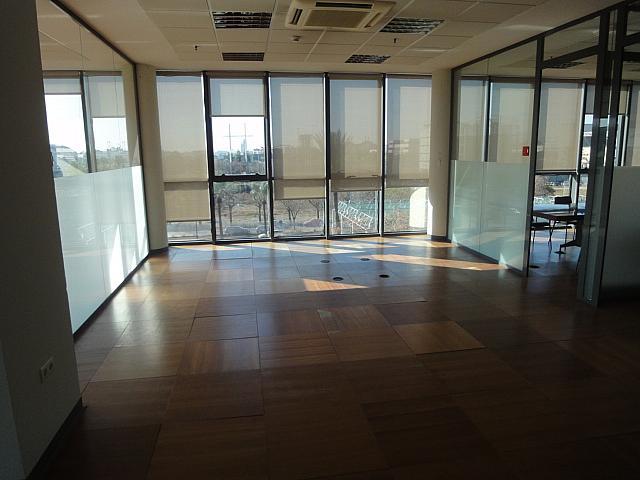 Detalles - Oficina en alquiler en Triana en Sevilla - 146411490