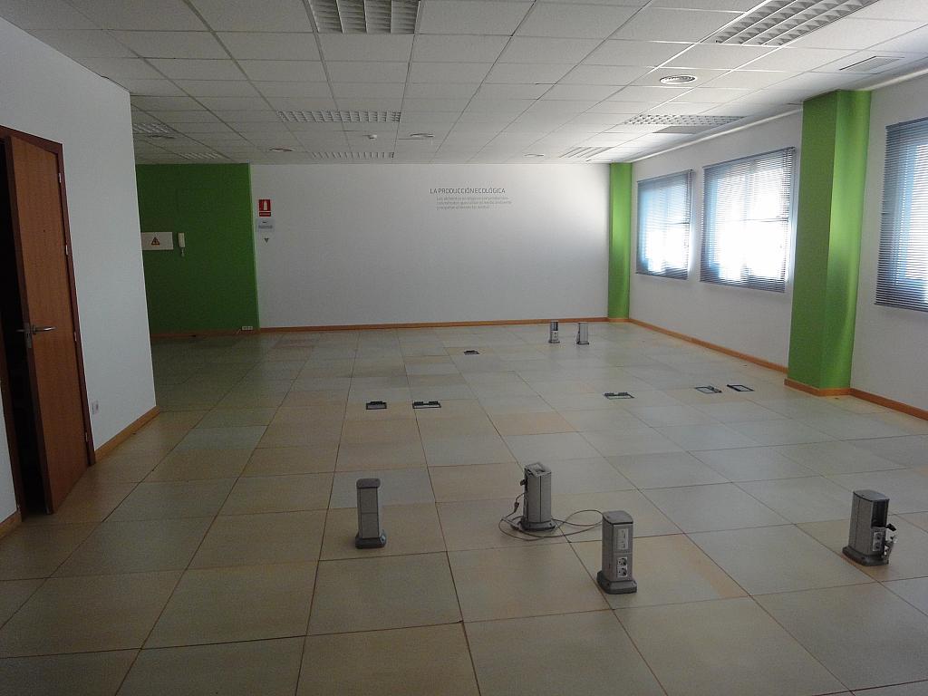 Detalles - Oficina en alquiler en Av. Ciencias-Emilio Lemos en Sevilla - 146412776