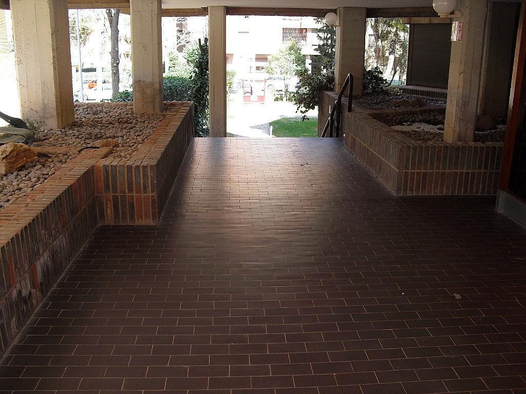 Jardín - Piso en alquiler en Cubas-Industria en Albacete - 260596102