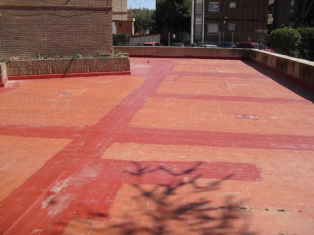 Jardín - Piso en alquiler en Cubas-Industria en Albacete - 260596131