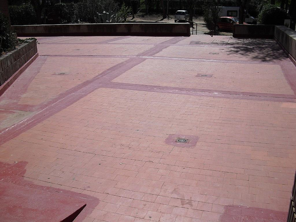 Jardín - Piso en alquiler en Cubas-Industria en Albacete - 260596132