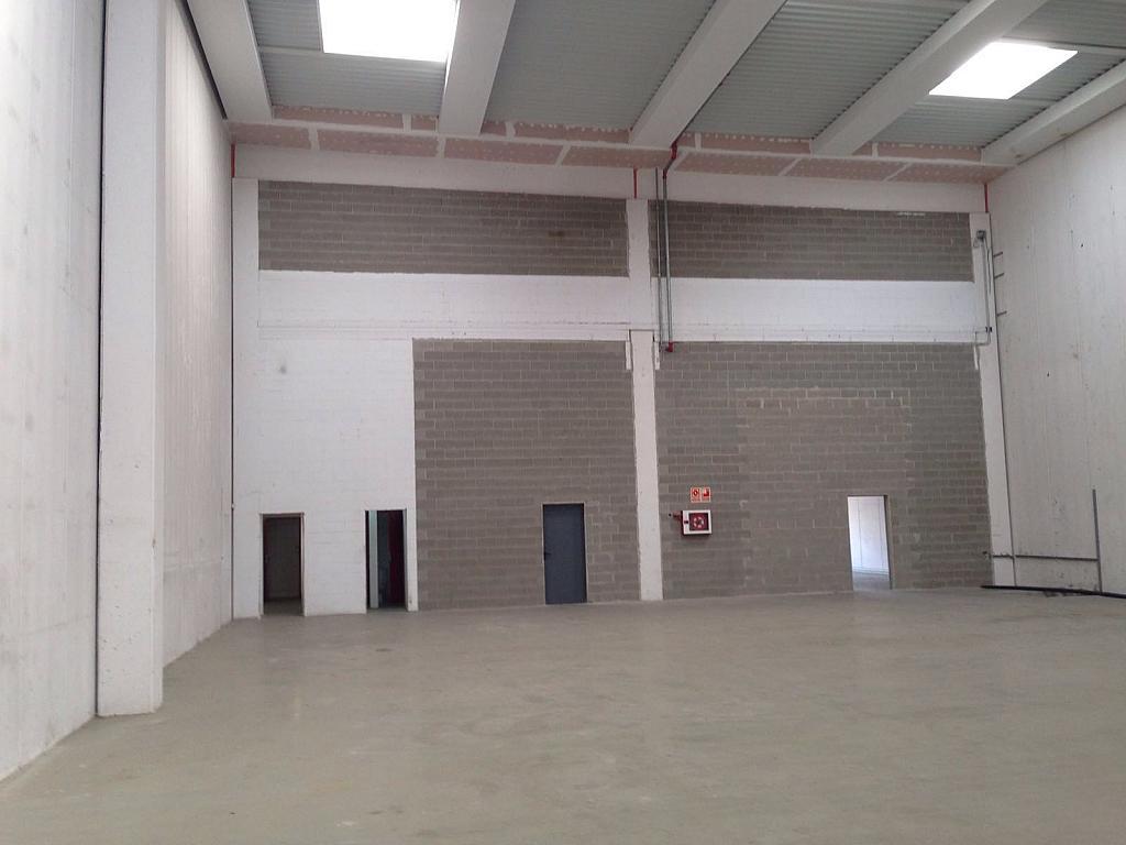 Nave en alquiler en calle Zona Industrial, Sant Sadurní d´Anoia - 286910734