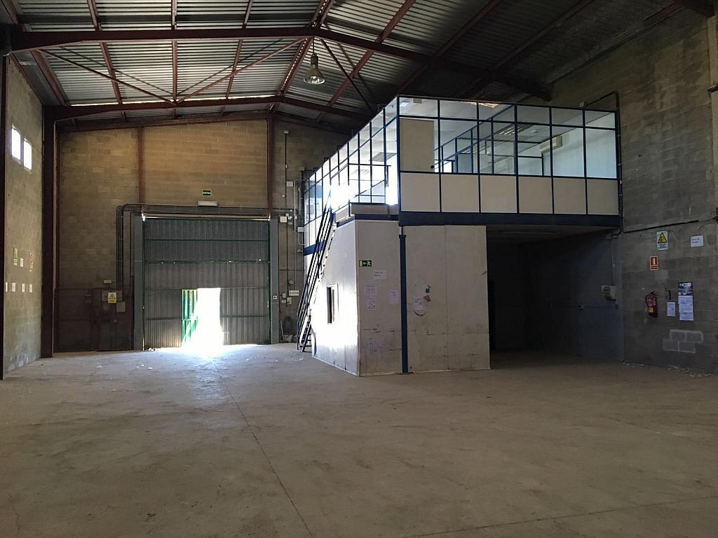 Nave en alquiler en calle Sec Industrial, Centre vila en Vilafranca del Penedès - 322033277