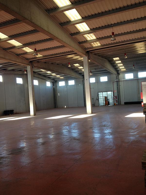 Nave industrial en alquiler en calle Proarc Immobiliària, Centre vila en Vilafranca del Penedès - 167843915