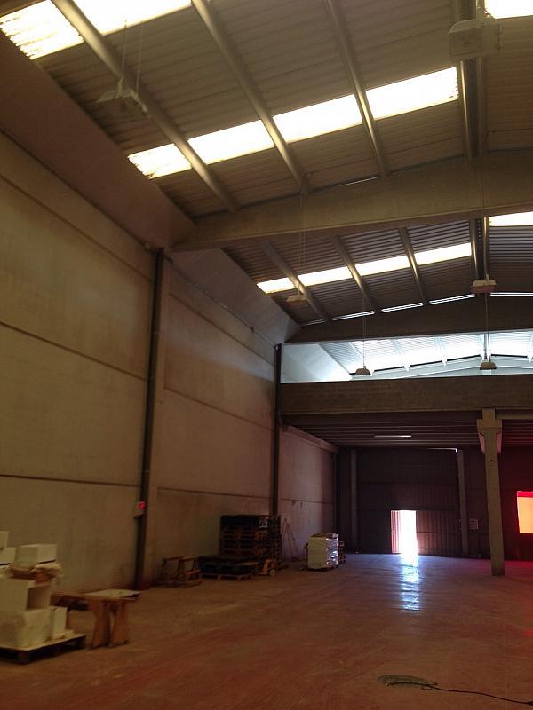 Nave en alquiler en polígono Sector Industrial, Centre vila en Vilafranca del Penedès - 192860715