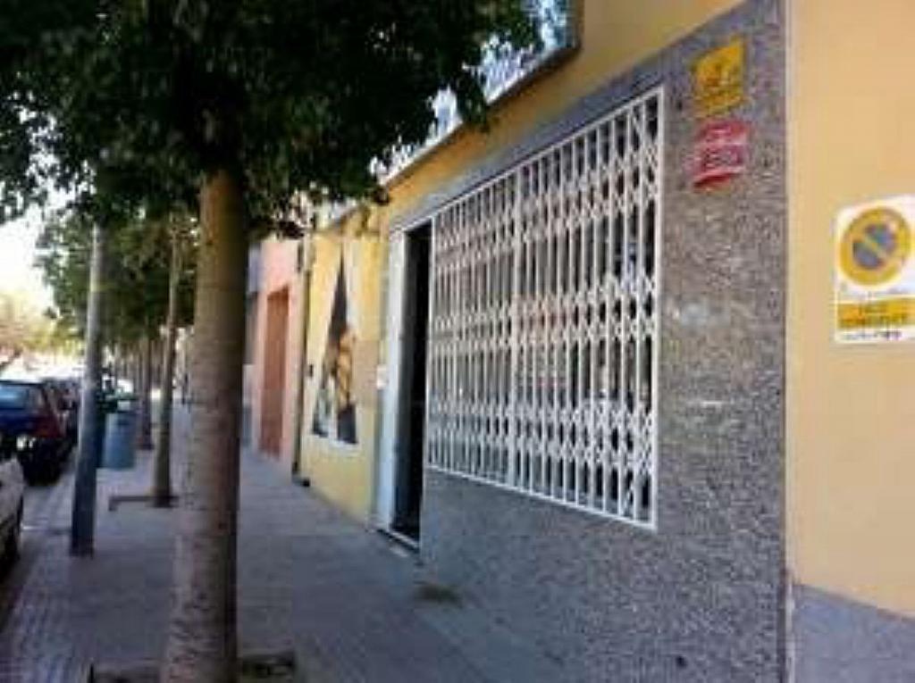 Local en alquiler en calle Pintor Muñoz Barberán, Palmar, el (el palmar) - 230029104
