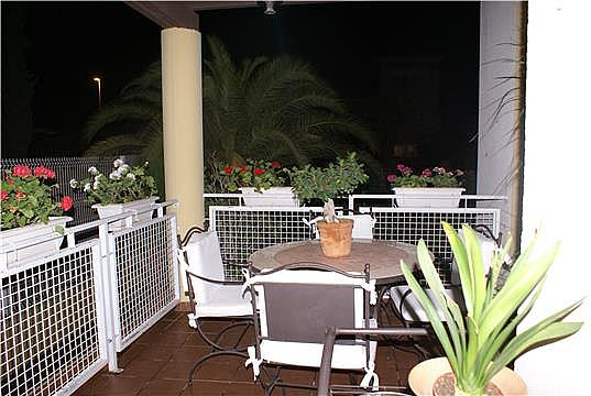 Terraza - Chalet en alquiler en calle Almohajar, Churra Cabezo de Torres - 266270684
