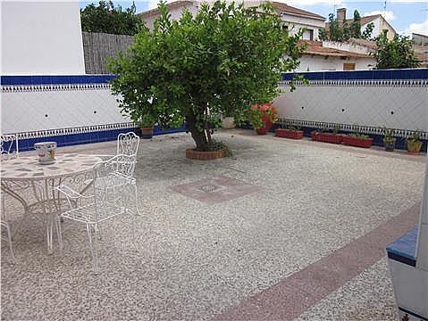 Terraza - Piso en alquiler en calle Valencia, Vistabella en Murcia - 301353540