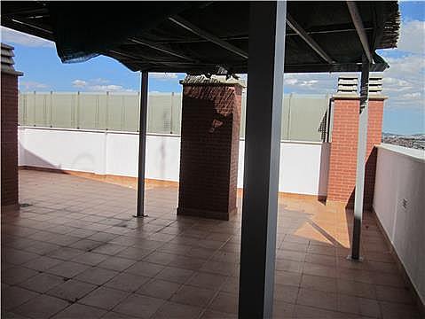 Terraza - Piso en alquiler en calle Juan Pablo II, Vista Alegre - 323456878