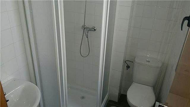 Baño - Piso en alquiler en calle Santa Isabel, La Catedral en Murcia - 323944267