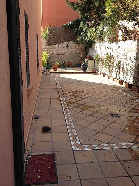 Patio - Piso en alquiler en calle San Lorenzo de El Escorial, San Lorenzo de El Escorial - 260629026