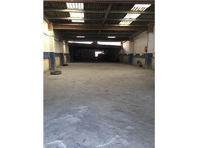 Local comercial en alquiler en calle Escorxador, Cardedeu - 321560134