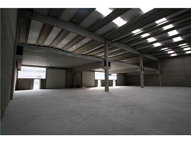 Nave industrial en alquiler en polígono Santa Matia Palautordera, Santa Maria de Palautordera - 321561421