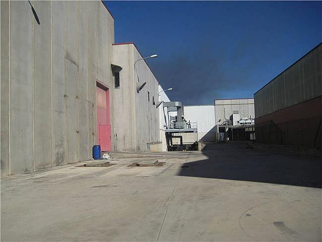 Nave industrial en alquiler en calle Pla de Matabous, Montcada i Reixac - 321559828