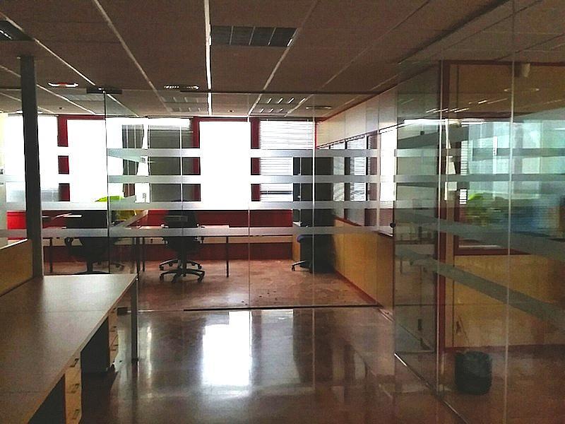 Oficina - Nave industrial en alquiler en calle Anoia, San Esteban de Sasroviras en Sant Esteve Sesrovires - 316017441