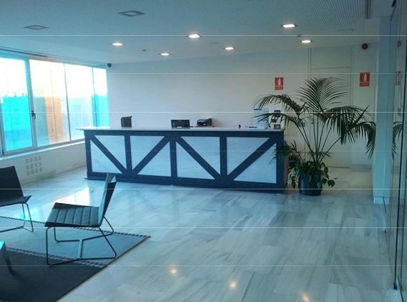 Oficina en alquiler en calle Pompeu Fabra, Canyado-Manresà en Badalona - 213590602