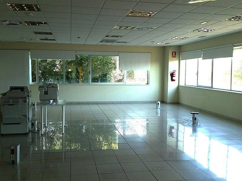 Nave industrial en alquiler en calle Botanica, Gran Via LH en Hospitalet de Llobregat, L´ - 224222319