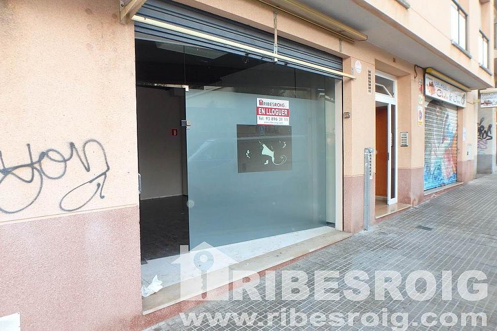 Imagen sin descripción - Local comercial en alquiler en Can Torreta en Sant Pere de Ribes - 228933556