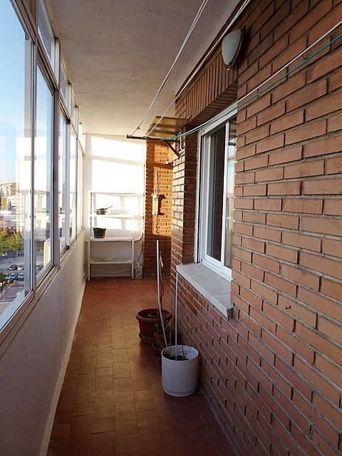 Terraza - Piso en alquiler en El Arroyo-La Fuente en Fuenlabrada - 159587345