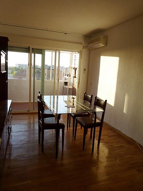 Salón - Piso en alquiler en El Arroyo-La Fuente en Fuenlabrada - 159587352