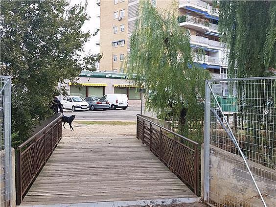 Local en alquiler en Alcalá de Henares - 241551929