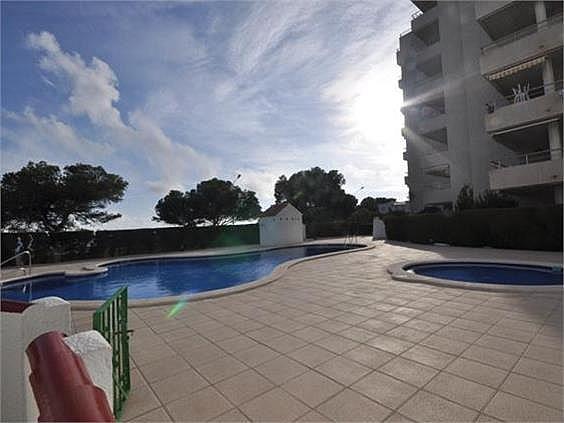 Apartamento en venta en Mont-Roig del Camp - 275854391
