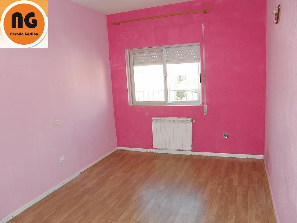 Piso en alquiler en calle Tintes, Colmenar Viejo - 328496707
