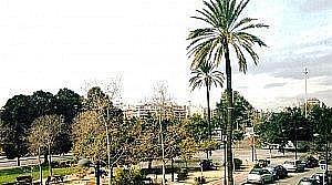 Foto - Oficina en alquiler en Mestalla en Valencia - 262125150