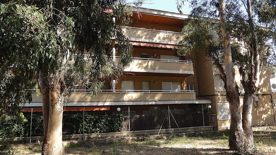 Apartamento en venta en calle Palfuriana, Coma-Ruga - 279034974