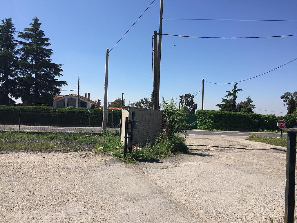 Terreno industrial en alquiler en Torrejón de la Calzada - 276672283