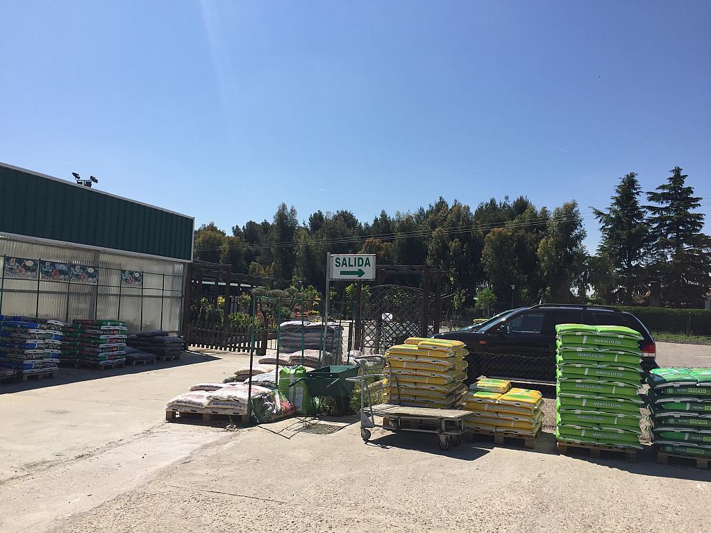 Terreno industrial en alquiler en Torrejón de la Calzada - 276672303