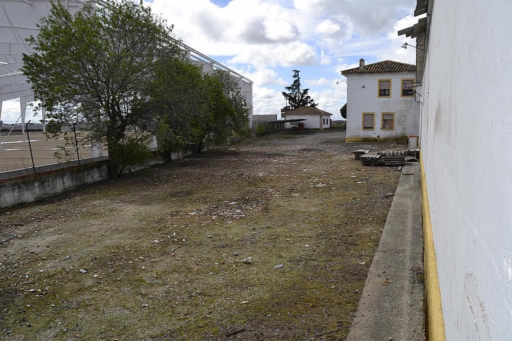 Nave industrial en alquiler en Torrejón de la Calzada - 131157497